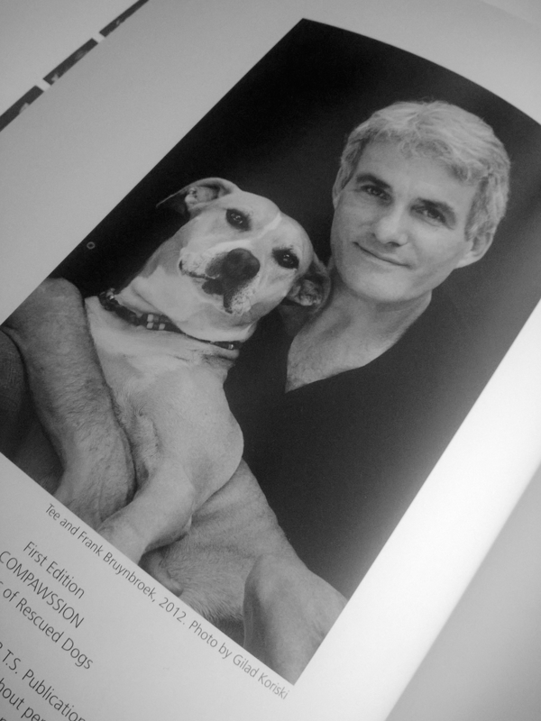 Compawssion book of rescued dogs portraits